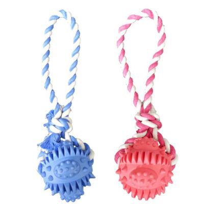 Rubber dental ball with rope dog toy