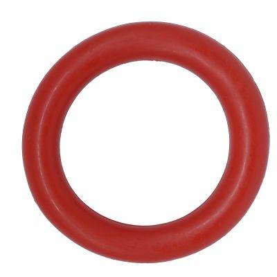 Rubber floating ring dog toy